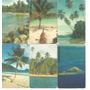 Serie Playas Venezolanas