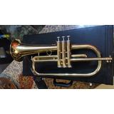 Trompeta Fliscorno(fluger)