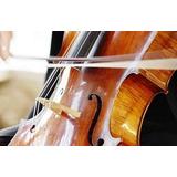 Servicio De Encerdado De Arcos Violín Viola Cello Contrabajo