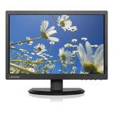 Monitor De 19 Lenovo Lcd Clase A Dvi Vga Negro Usado