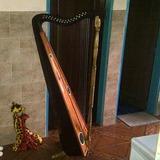 Arpa Llanera Profesional 32 Cuerdas
