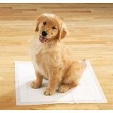 Colector Higiénico Para Perros Y Animales En General