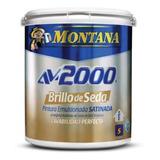 Pintura Brillo De Seda Av 2000 Blanco Montana