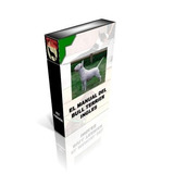 El Manual Del Bull Terrier Y Adiestramiento Pdf 10 Libros +