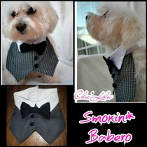 Ropa Perros Smokin Traje Poodle Snaucher Chihuahua Pincher