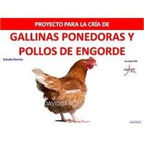 Proyecto De Gallinas Ponedoras, Pollos, Para Pedir Credito