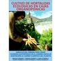 Manual De Cultivos De Hortalizas En Mesas Organoponicas