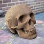 Escultura Calavera Cráneo Animal Lampara Decoracion Moderno