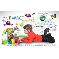Profesora/tutora/coach Educativo Mate/física/química/otras