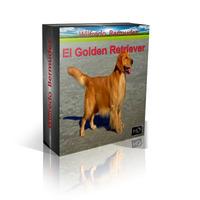 Libro Electronico El Golden Retriever Adiestramiento Y Mas