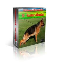 Libro Electronico El Pastor Aleman Adiestramiento Y Mas