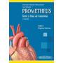 Texto Y Atlas Anatomia Tomo 2 Organos Internos Prometheus
