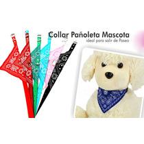 Collar Con Pañoleta De 39cms Para Perros Y Mascotas