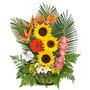 Ramos Florales Y Frutales Vallechic