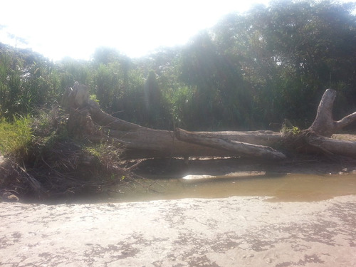 Estudio De Impacto Ambiental, Racda, Topografía, Suelo, Agua