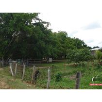 Hacienda O Finca En Venta En Cojedes El Baúl