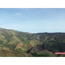 Terreno En Venta En Vargas - Carayaca