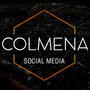Gestionamos Tus Redes Sociales. / Community Manager