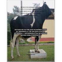 Modelo Proyecto Agropecuario Para Crédito Bancario