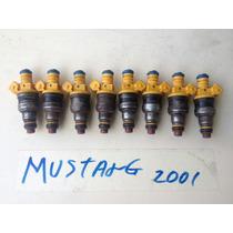Inyector De Ford Mustamg Año 2001