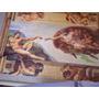 Clementoni Museum La Creazione, Michelangelo.1000pz