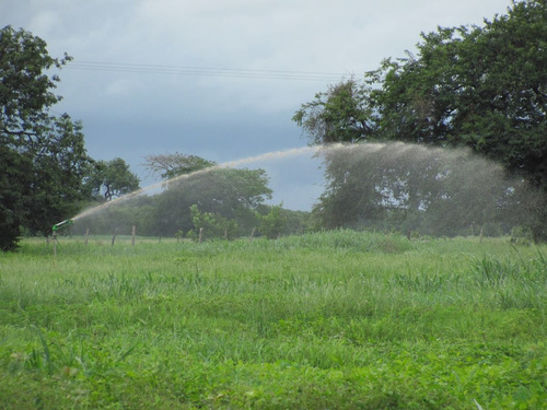Sistemas De Riego Agricolas, Jardines, Paisajismo Proyectos
