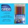 Colores Papermate 12 Bicolor (24 Colores).escolar Ofidb Ccs