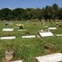 Parcelas Jardines Del Recuerdo, Valencia - Leer Descripción   MARCELOPEREZ4613
